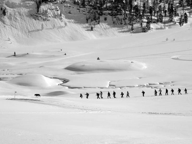 Kandersteg_trail
