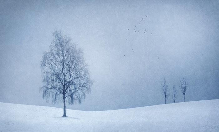 Winter_blues