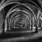 """""""Cellarium Shadows"""", Alan Saunders (C)"""