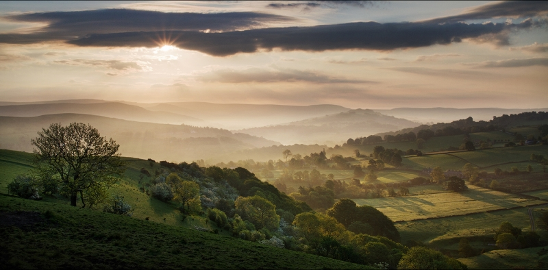 Springtime mists_Jackie Robinson