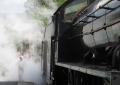 Fun in the steam