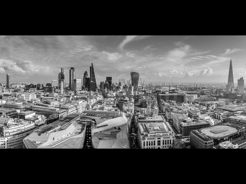 Growing City II
