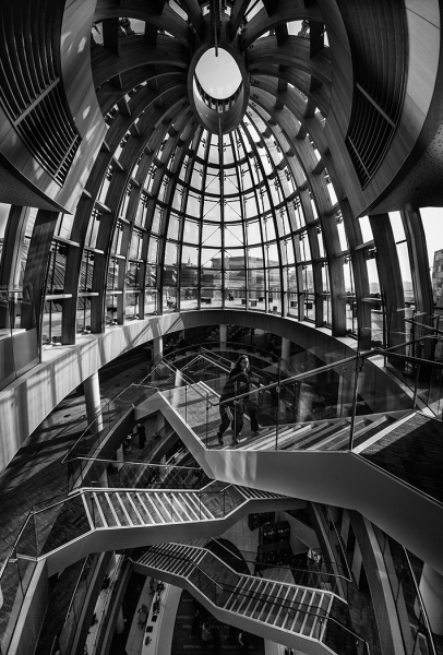 Staircase_-_Liverpool_library