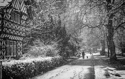 Dog_Walking_in_the_Snow - Tony Redford_20